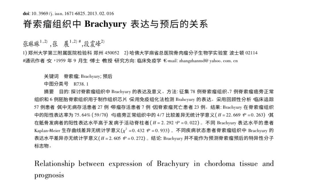 脊索瘤组织中Brachyury表达与预后的关系2013