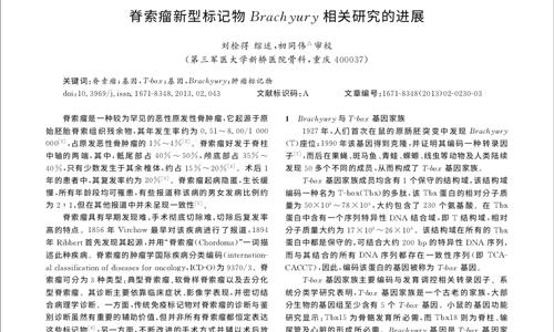 脊索瘤新型标记物Brachyury相关研究的进展2013